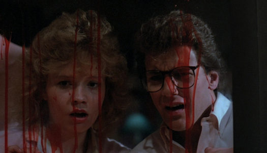 Final Girls Ep 68: The 80's were WEIRD part 2 'Death Spa' & 'Chopping Mall'