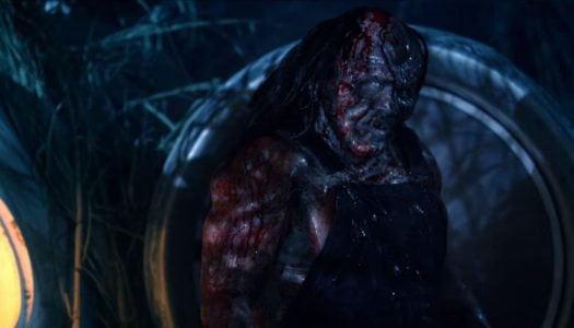 Victor Crowley [video review]