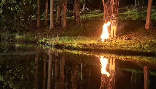 Luke Shanahan's 'Rabbit' Now On VOD And DVD