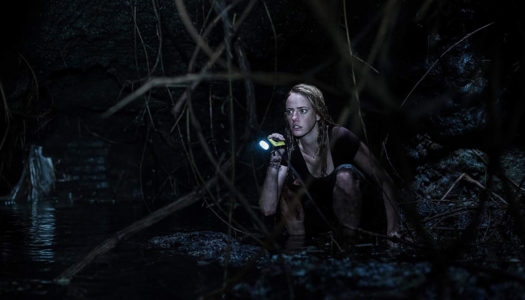 You Can't 'Crawl' Away In Newest Alexandre Aja-Directed Creature Feature [Trailer]